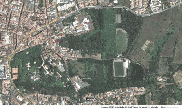 Mata_Parque_S